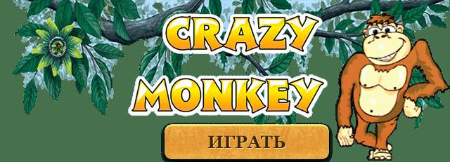 crazy monkey обезьянки лого